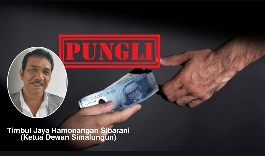 Sibarani : Lanjutkan Kepihak Berwajib, Dugaan Pungli Honorer & PDAM Tirta Lihou