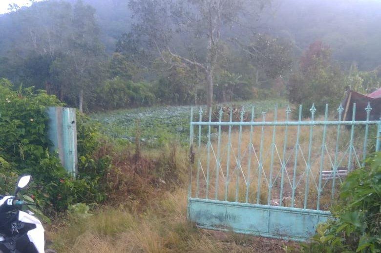 Pagar Gerbang Kebun Dani Girsang Disantroni Maling