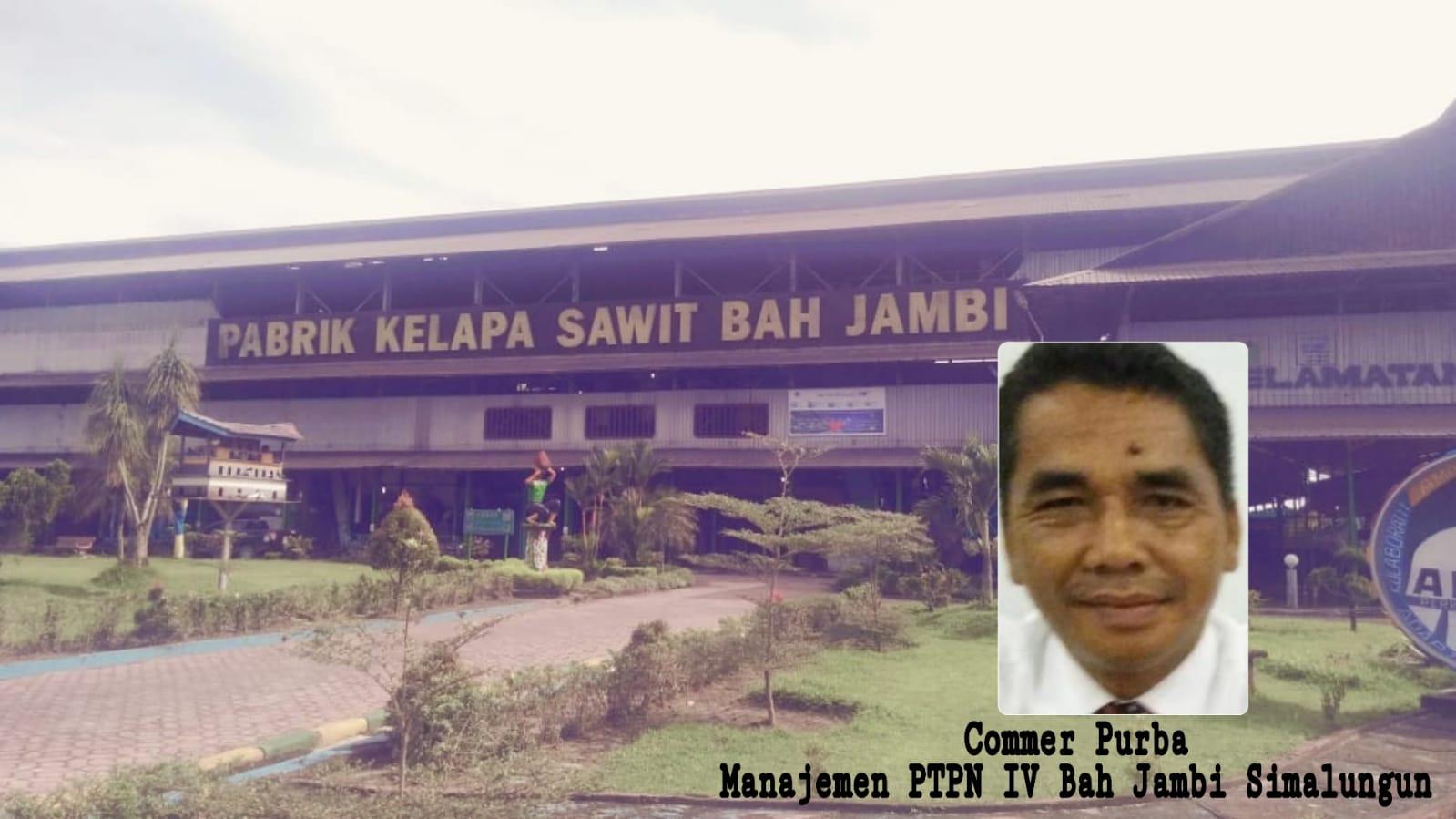 Commer Purba PTPN Bah Jambi: Pemberhentian Dan Pengusulan Pekerja Wewenang Direksi PTPN IV